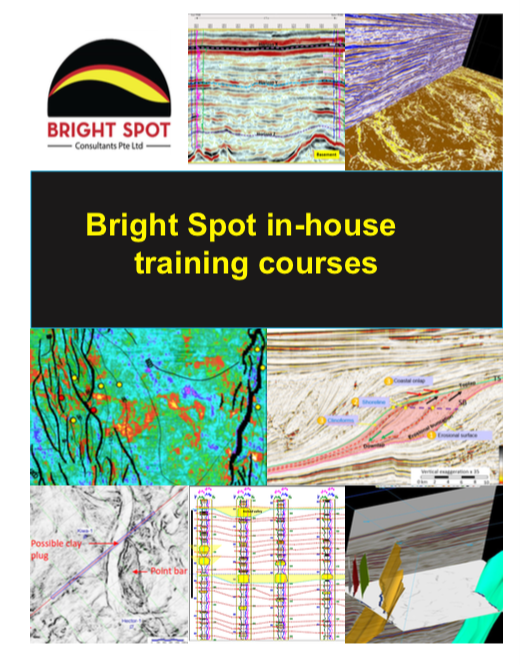 Bright Spot Training